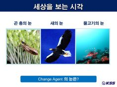 세상을 보는 시각...3가지 관점<환경변화와 자기혁신> 강의 PPT자료30..강사:KSS 대표/김세우