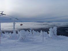 Winter Wonderland in the ski hills of Kimberley, BC Big White Ski Resort, Presidents Day Weekend, Ski Hill, Best Ski Resorts, Winter Wonderland, Adventure Travel, North America, Skiing, Beautiful Places