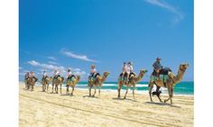 Get Ready For Fun And Excitement In Your #EgyptExcursions http://egyptonlinetours.blog.com/2015/07/30/get-ready-for-fun-and-excitement-in-your-egypt-excursions/