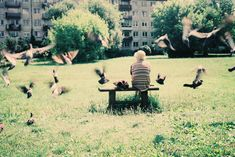 Tens And Ones, Photo Awards, Lomography, Photography And Videography, Award Winner, Dolores Park, Scene, Homes, Urban