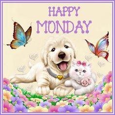 Happy Monday :); good,morning; cat dog butterflies