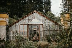 Photo Essay by Fig & Forest — Table Magazine Shed Cabin, Greenhouse Plants, My Secret Garden, Photo Essay, Growing Vegetables, Abandoned Places, Fig, Garden Design, Rustic