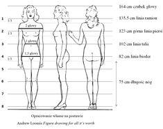 Idealne proporcje ciała kobiety według podręcznika do nauki rysunku