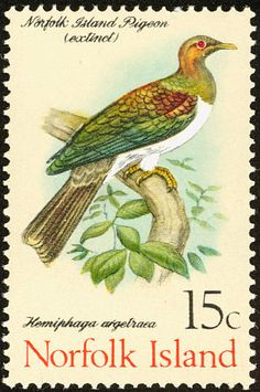 New Zealand Pigeon stamps - mainly images - gallery format