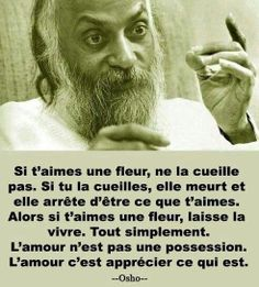 citations fleurs on Pinterest | Coeur D'alene, Nutella and Alex O ...