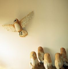 Mister Finch - Textile Artist From a Fairytale World