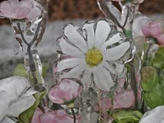 cemetery flowers after the ice storm | Flickr - Photo Sharing!