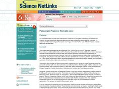 PASSENGER PIGEONS: NOMADS LOST 6th - 8th Grade Lesson Plan | Lesson Planet