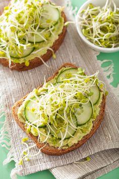 Si lo que quieres es una ensalada, este pan tostado con germen, pepino y aguacate. | 17 Recetas con aguacate y pan tostado que te resolverán la vida