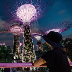 Instagram-worthy Places in Singapore: Gardens by the Bay