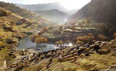 Palagan, Iran