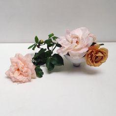 Plum Pretty Sugar, Floral Arrangements, Anniversary Gifts, Bridal Shower, Bloom, Stud Earrings, Instagram Posts, Flowers, Jewelry