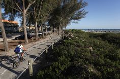 A cyclist rides along the Coquina Beach trail in Bradenton Beach on Anna Maria Island that overlooks the Gulf of Mexico. Bradenton Beach has more than five miles of bike paths and bike lanes along Gulf Drive.
