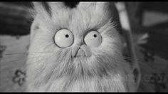 Frankenweenie - directed by Tim Burton (2012)