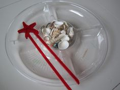 Use shells to develop matching and counting skills