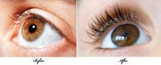2T castor oil + 4T Vitamin E oil + 2T aloe vera gel into an old mascara container (washed well) = eye lash growth. Apply a light layer to lashes & at lash line every night for six weeks.