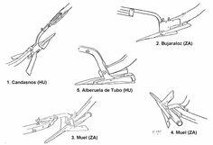 Foro de Belenismo - Miniaturas, detalles y complementos -> Arados