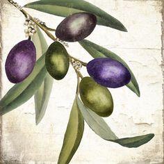 Olive+Branch+I