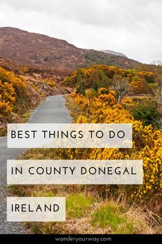 Way up in the northwest of Ireland lies County Donegal — a wild, rugged and remote area that is packed with things to do. You'll find a stunning coastline, beautiful parks and colorful towns not to mention incredible people. Click through to find out more.