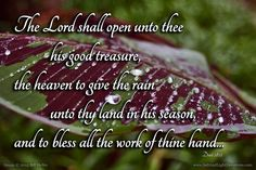 The LORD shall open unto thee his good treasure the heaven to give the rain unto thy land in his season and to bless all the work of thine hand: and thou shalt lend unto many nations and thou shalt not borrow.--Deuteronomy 28:12 KJV    http://ift.tt/2dlIsJq  #Bible #inspirational