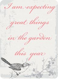 Every year, I think that I will create something worthy of Better Homes and Gardens, but so far.....................:)