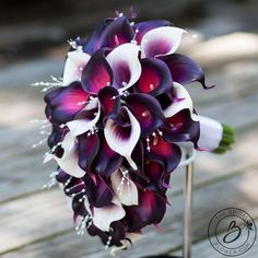 How to Plant Potted Flowers Outdoors in the Soil : Garden Space – Top Soop Lilly Bouquet Wedding, Cascading Wedding Bouquets, Plum Wedding, Lily Wedding, Bridal Flowers, Bridesmaid Bouquet, Fall Wedding Purple, Wedding Ideas, Purple Calla Lilies