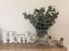 15x Eucalyptus Huis : A z legjobb kép a z eucalyptus táblán flower arrangements