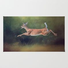 Fly London Metaverse I Can White Tailed Fawn by Jai Johnson Canvas Art Canvas Artwork, Artistic Photography, Throw Rugs, Online Art, Cute Pictures, Deer, Fine Art Prints, Photo Galleries, Wildlife