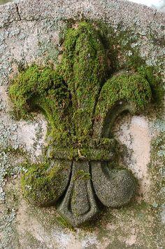 Moss-covered fleur de lis | Monceau | Flickr