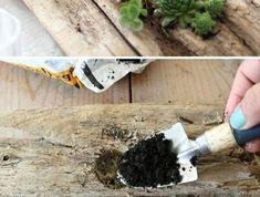 10-treibholz-ast-gruene-pflanzen-arm-erde-bleuer-nagellack-tischdeko-diy