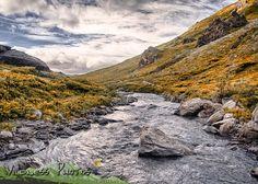 Denali National Park Alaska - Savage River