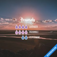Heavenly - Essential Oil Diffuser Blend