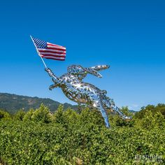 The Footh of July  #visitnapavalley #visitnapa #4thofjuly #bunnyfoofoo