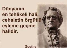 Dünyanın en tehlikeli hali cehaletin örgütlü eyleme geçme halidir Goethe