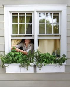 These window boxes, just two feet long each, are big enough to grow all sorts of herbs, including oregano, basil, chives, and rosemary.