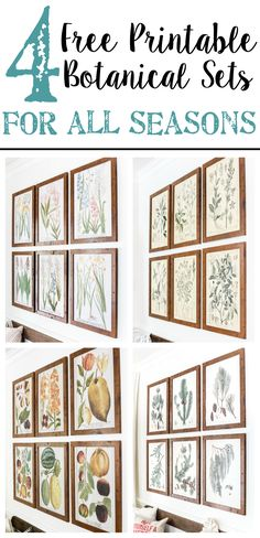 4cf9ed09a2 A free printable set of spring botanical art for $3 each on color engineer  prints or