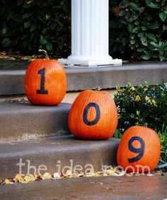 Lots of DIY Fall Decor