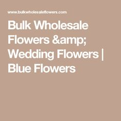 Bulk Wholesale Flowers & Wedding Flowers | Blue Flowers
