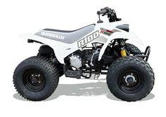 R100 Junior Quad.   For more information: http://www.fresh-group.com/junior-quads.html