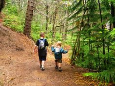 Great hikes for the enitre family on the island of Oahu.