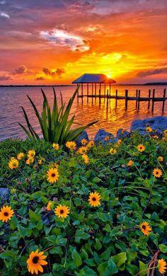 Glorious sunset.
