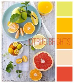 littletree designs: colour inspiration...'citrus brights'