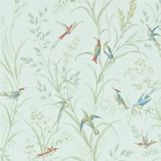 Tuileries Wallpaper A delightful wallpaper featuring lively hummingbirds flitting amongst wild grasses. Printed with a hand-block style in sage and multicolours on a pale green background.
