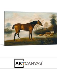 Ready-to-hang Mr Ogilvie's Bay Racehorse on a Riverbank with a Group of Cows Canvas Art Print for Sale canvas art print for sale. Free hanging accessories and insurance. Cow Canvas, Racehorse, Art Prints For Sale, Cows, Canvas Art Prints, Group