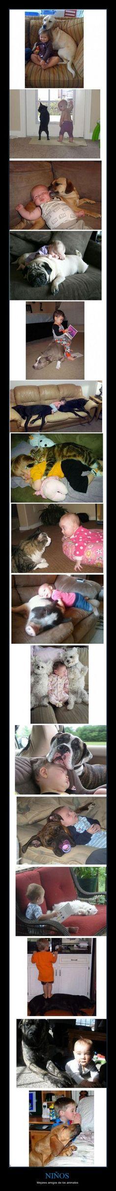 NIÑOS - Mejores amigos de los animales