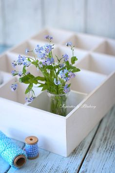 Blueberry: Spring Treasures and Giveaway ♥ Purple Tulips, Blue Hydrangea, Blue Flowers, Little Flowers, Real Flowers, Pretty Flowers, Forget Me Not Blue, Lavender Cottage, Garden Journal