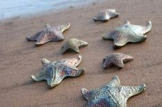 Raku Pottery Clay Starfish at water by Wildfire Pottery Sarah Beck Cabot Trail, Atlantic Canada, Raku Pottery, Cape Breton, Prince Edward Island, New Brunswick, Canada Travel, Nova Scotia, Road Trip