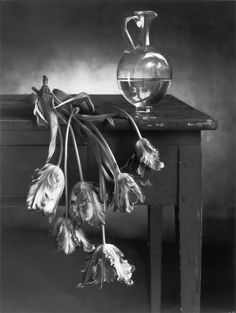 Christian COIGNY :: Still Life, Artwork Portfolio