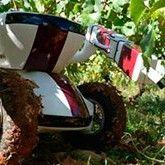Un robot revolucionará la industria mundial del vino en 2016. Utiliza algunos de los elementos más avanzados de la tecnología militar y médica y promete con transformar la industria mundial del vino, al permitir recopilar información clave sobre el estado de los viñedos.