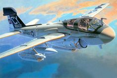Grumman EA-6B Prowler (Shigeo Koike)